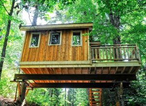 TREEHOUSE RENTALS