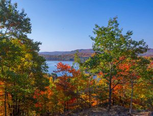 land for sale in Tremblant